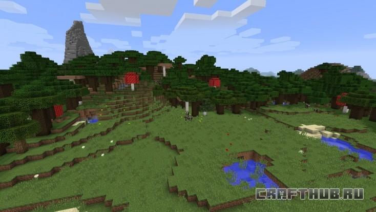 Грибы! В основном лес, но есть несколько грибов.