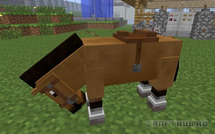 управление лошадью