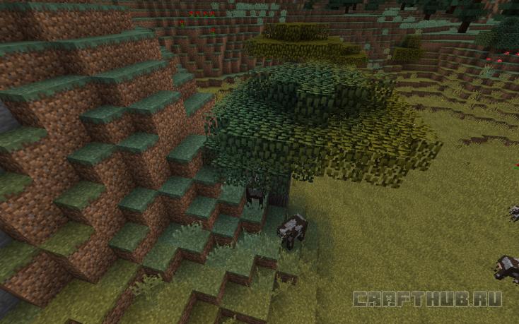 Граница биомов