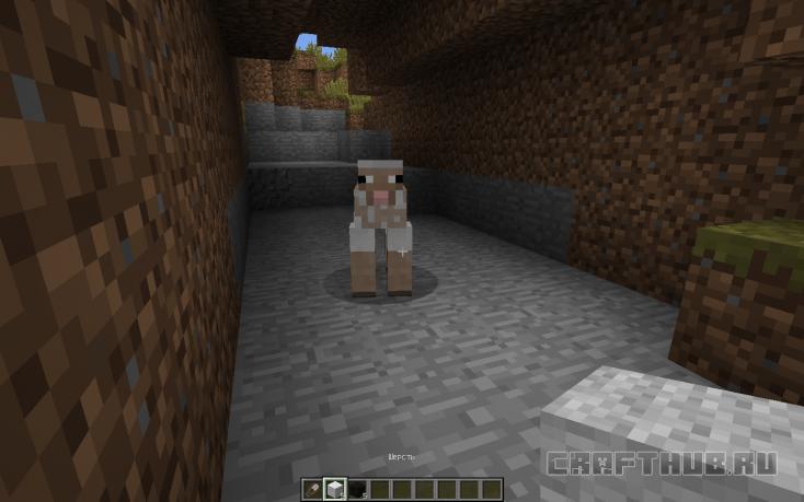 остриженная овца